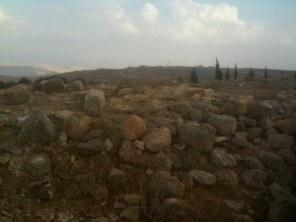Kiedyś było tu miasto odbudowane po niewoli, którego mieszkańcy pomogli w odbudowie murów Jerozolimy (Neh 3,5)