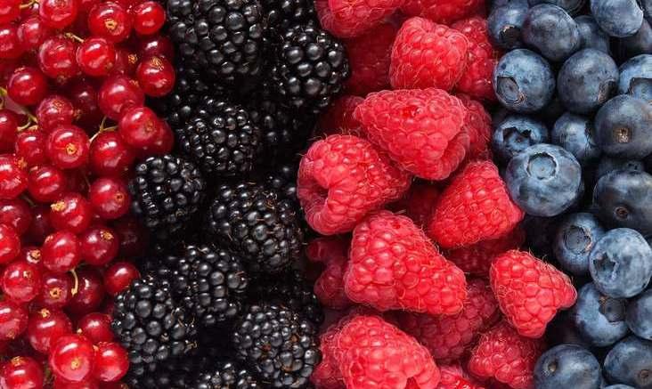 Choose lower-fat snacks 1