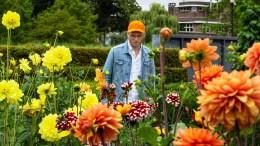 man wearing blue denim jacket standing on flower field