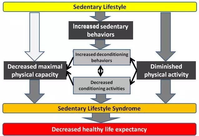 How To Fit Exercise In A Sedentary Lifestyle 1