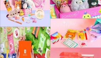 Best 5 Japanese Subscription Boxes