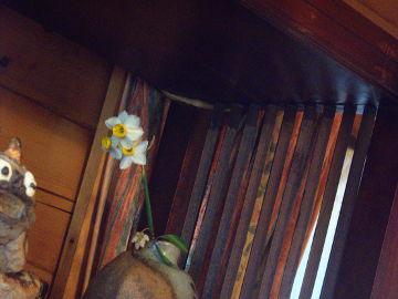 【写真】陶工房 滋風の陳列棚上段。中央に水仙を生けた Sigeru の花器。左に Sigeru の森の精