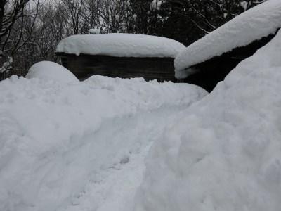 「雪の工房-仕事場へ」