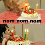 Selamat hari lahir Zik yang ke ??