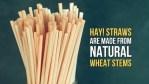 straw buluh