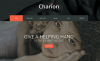 Top 10 affecting charity WordPress templates 2017