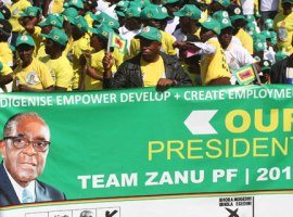 Two axed to death in Zanu PF fights