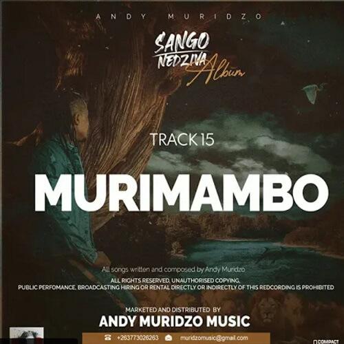 andy muridzo murimambo