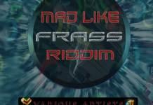mad like frass riddim