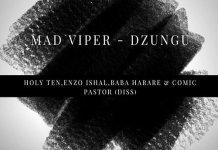 mad viper dzungu holy tenenzo ishalcomic pastor baba harare diss