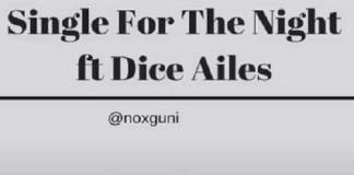 nox ft dice ailes single for the night