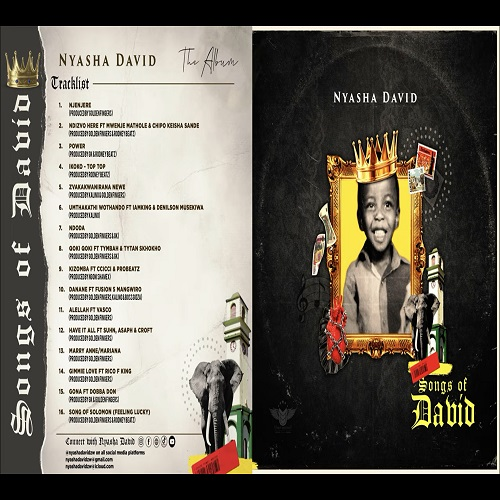 nyasha david song of solomon