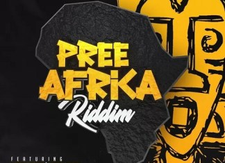 pree africa riddim