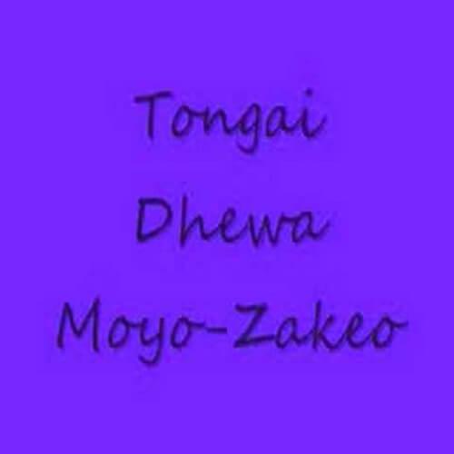 tongai moyo zakeo