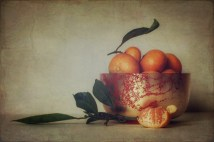 Still life with mandarins; edited with Stackables for painted effect. Image: Su Leslie, 2017
