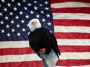 Patriotism, America the Great