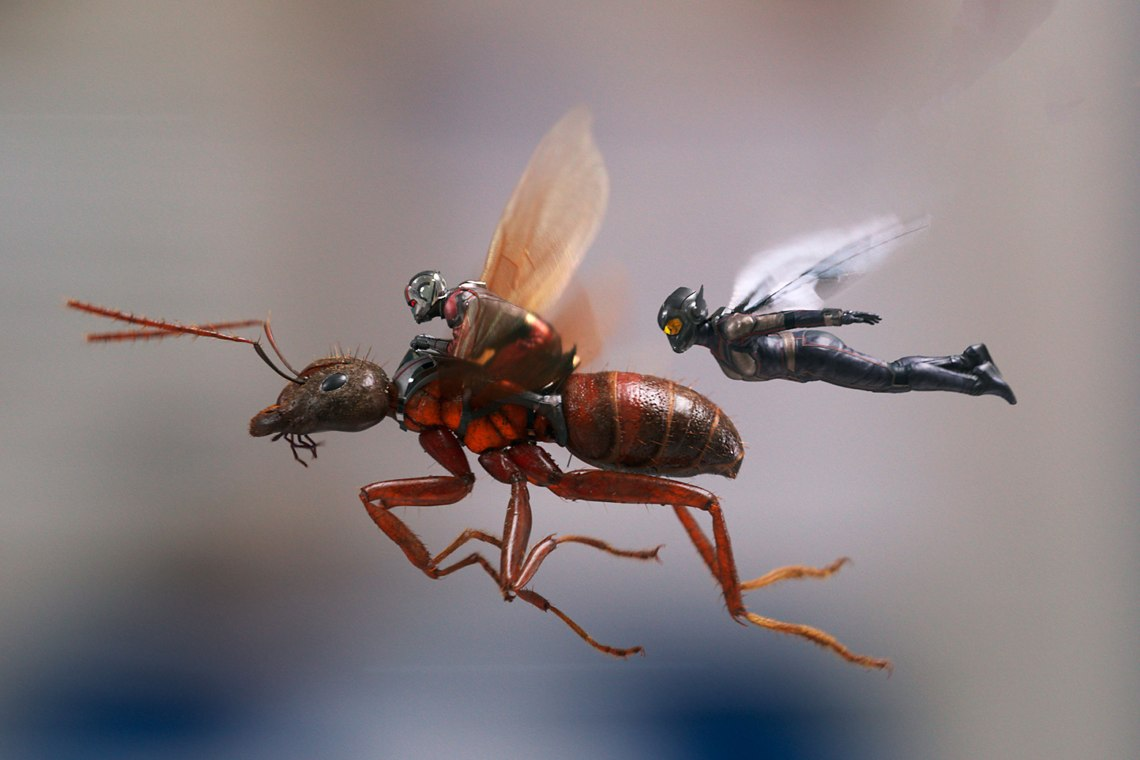 ant-man-and-the-wasp-j4