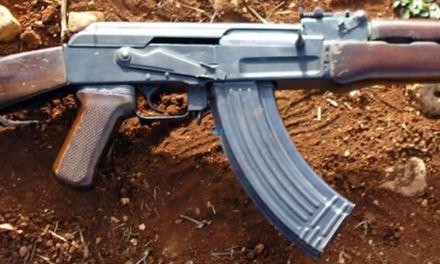 Violent demos: Stolen police guns recovered
