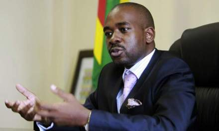 Chamisa turns down Mnangagwa dialogue invitation