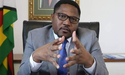 New Zim currency coming but not Biti's way:Mutodi