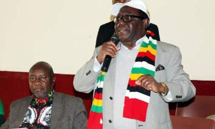 Votes of no confidence must stop, Zanu-PF