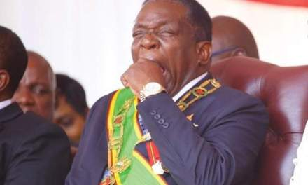Harare lawyer takes Mnangagwa to ConCourt