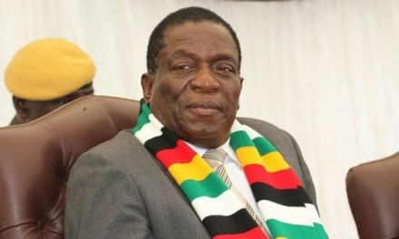 Mnangagwa intervenes in currency rift