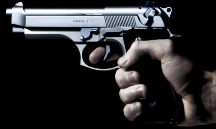Gweru pair up for stealing gun at police station
