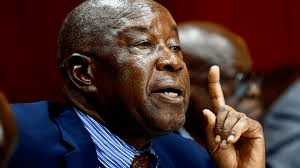 """Come Of Age And Join ED's Dialogue"": Mutsvangwa Tells Chamisa"