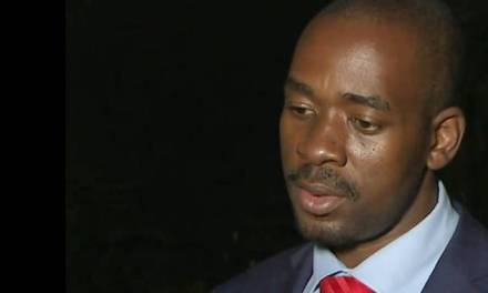 $4million for Chamisa's head