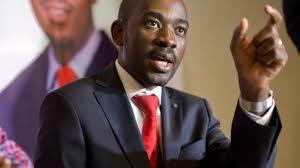 Chamisa chides MDC-A youths against macho politics