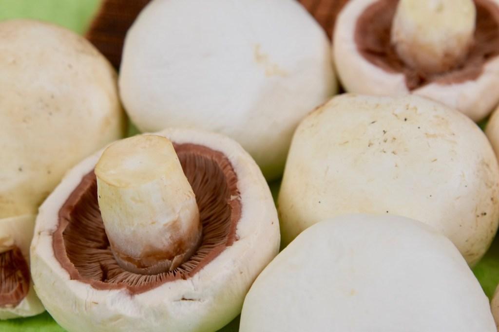 weiße Champignons - Nahaufnahme
