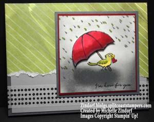 Rainy Day Parrot