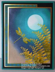 Ferns at Night