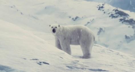 snowpiercer oso
