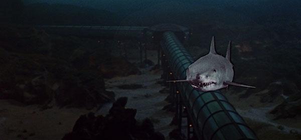 El gran tiburón 02