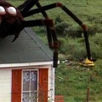 La invasión de las arañas gigantes (1975), vinieron del espacio