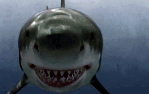 Raiders of the lost shark 02