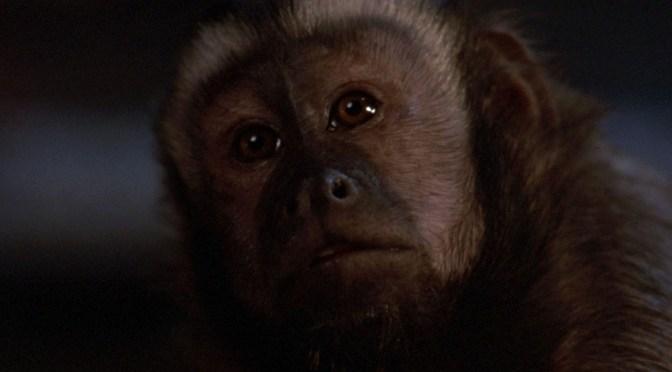 Atracción diabólica (1988), cuidado con el mono