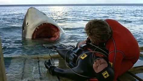 El Último Tiburón 03