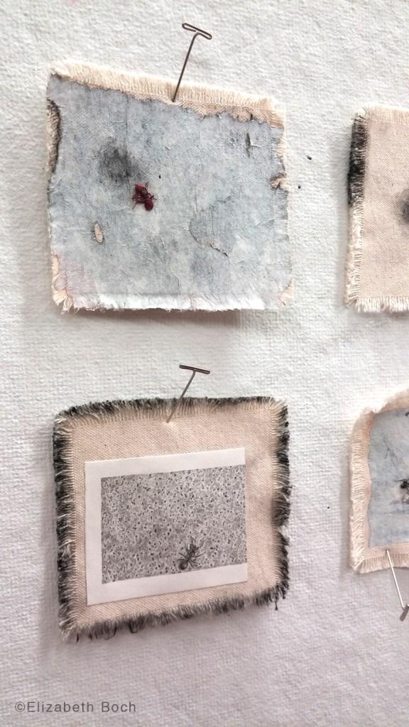 Elizabeth_Boch_Ant-Herding-detail