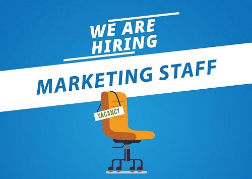 zintech hiring marketing staff-500-355