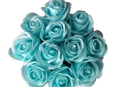 Sinised seebiroosid (M) anumas