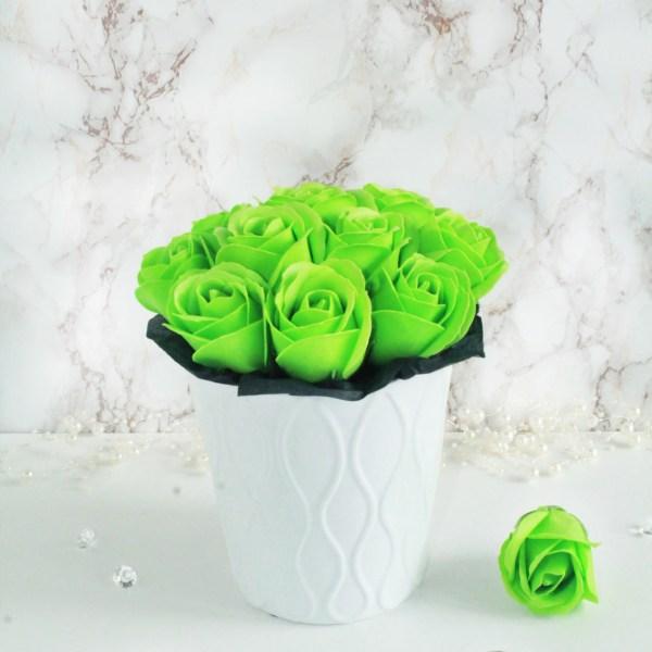 Rohelised seebiroosid (M) anumas