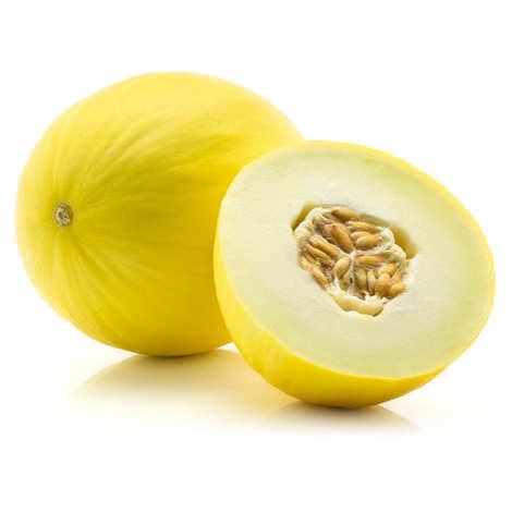 Aroomiõli Kirss-Melon 20 ml – 100 ml