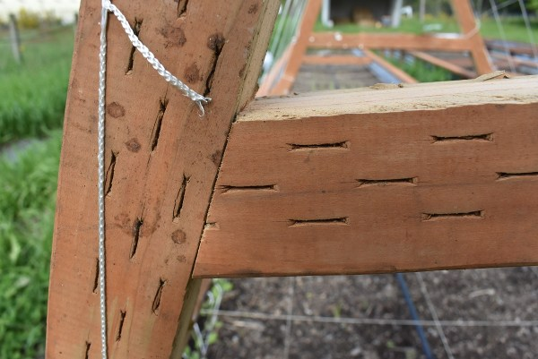 Mitering the middle of the A-Frame trellis