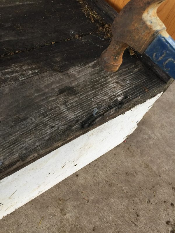 Nail down the Plywood or Migratory Outer Cover to your Swarm Trap Bottom