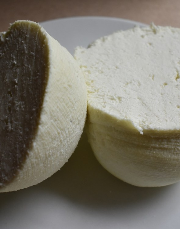 DIY Cheese – Panir – A Versatile By-Product of Keeping Goats