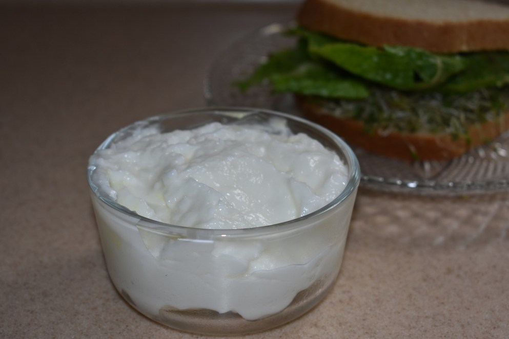 Homemade Mayonnaise final product
