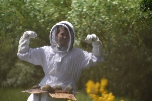 The protecting Suit for Harvesting Honey